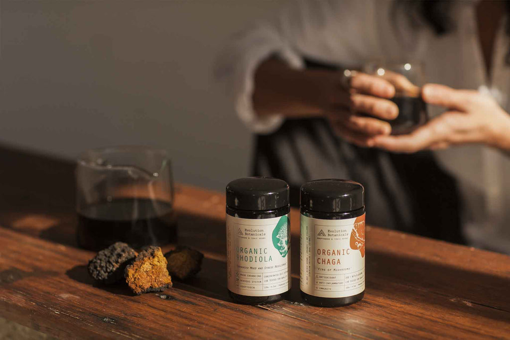 Chaga & Rhodiola Tonic - Energising Coffee Replacement