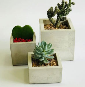 Carré Short Concrete planter