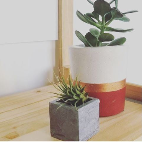 HD Pop Concrete planter