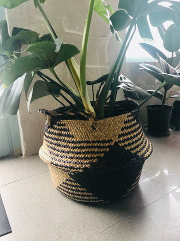 Seagrass Planters | the makers