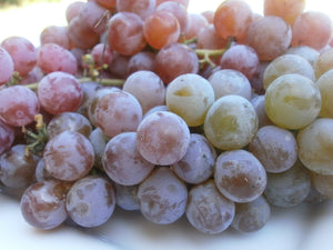 Organic Candice Grape Seeds - 20 Seeds - Early seedless red grape, Medium size fruit, spicy flavor, USDA Zones 4a and above