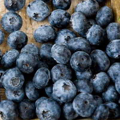 Organic Brigitta Blueberry Seeds - 35 Seeds -  one of the highest quality berries available!  perfect balance, sweet yet slightly tart