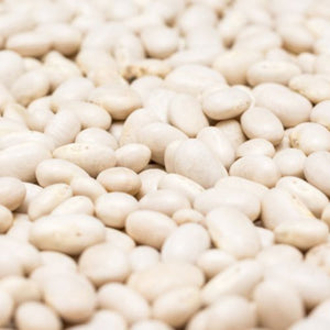 Organic White Navy Beans - Simple to Grow, Keeps Very Well - 2 Ounces