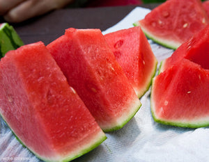 Organic Wilsons Sweet Watermelon Seeds - There is Nothing Like This Watermelon! 10 Seeds