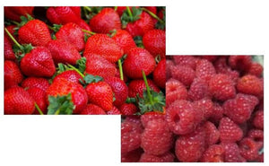 25 Organic Festival Day Strawberry Seeds and 25 Fall Red Raspberry Seeds