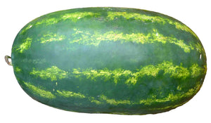 Organic Crimson Sweet Watermelon Seeds - Classic Long Watermelon, Amazing Flavor - 10 Seeds