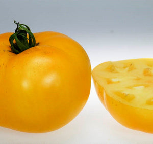 Organic Lemon Boy Tomato Seeds-20 Count-Wonderful Yellow Tomato with an amazing taste. Keeps very well, long shelf life. Make your dish pop!