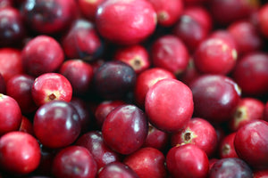 Organic Early Black Cranberry Seeds - 30 Seeds - Heavy Producer