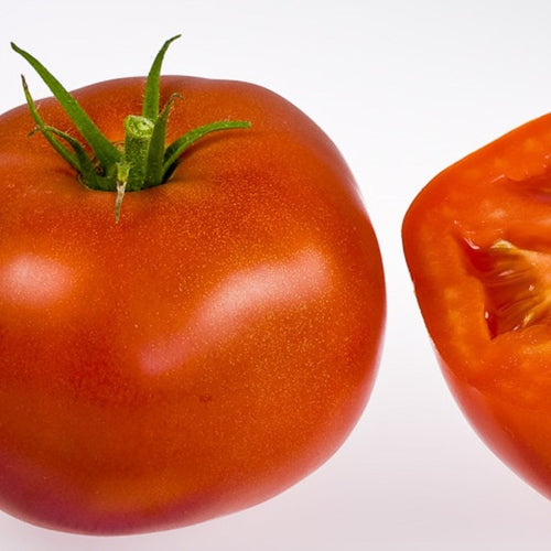 Organic Amelia Tomato Seeds - 20 Seeds-One of our best selling tomatoes-An heirloom that your grandma used to grow