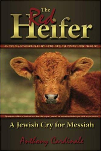 The Red Heifer: A Jewish Cry for Messiah by Anthony Cardinale