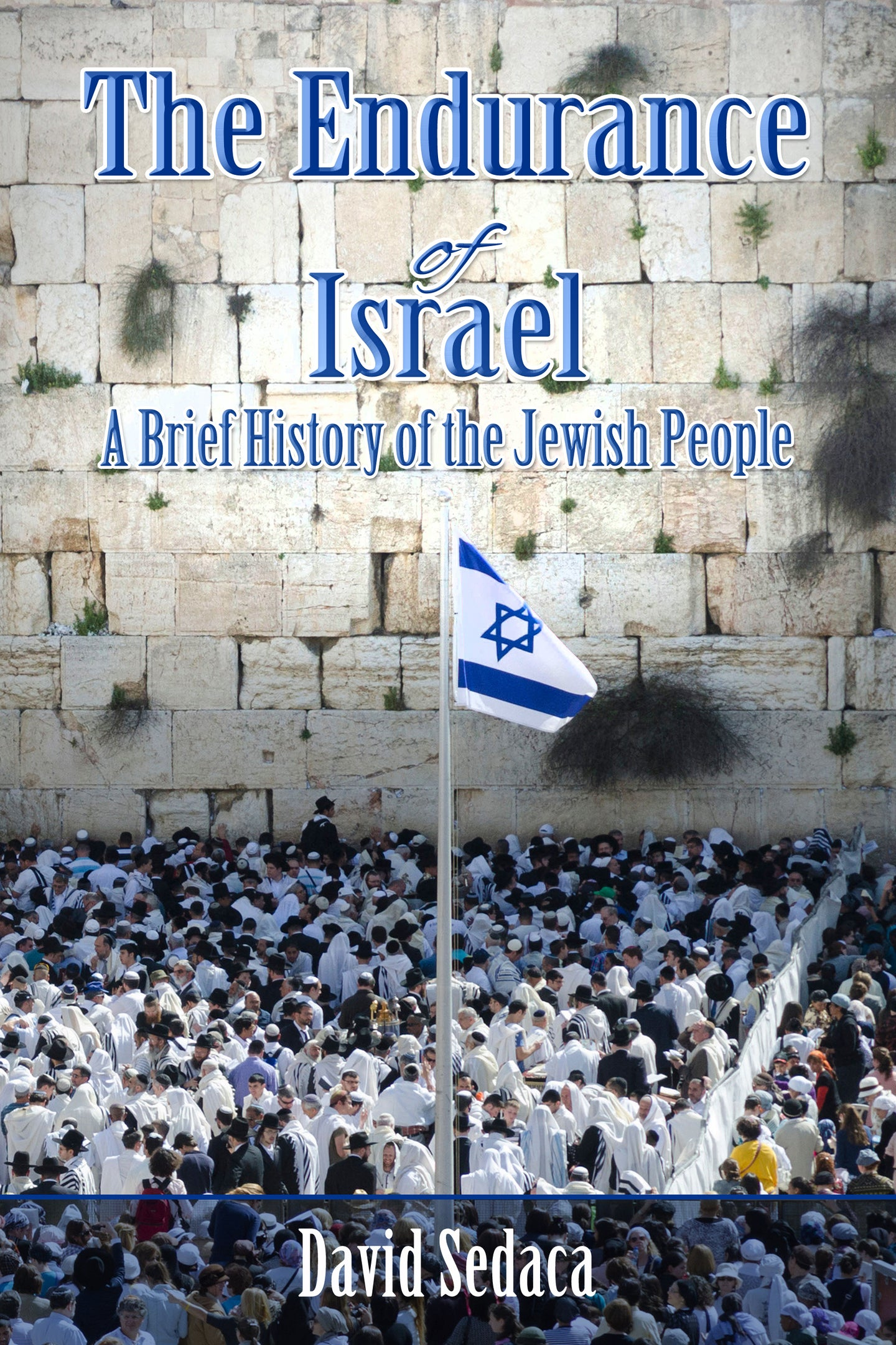 Endurance of Israel: A Brief History of the Jewish People by David Sedaca COMING SOON!