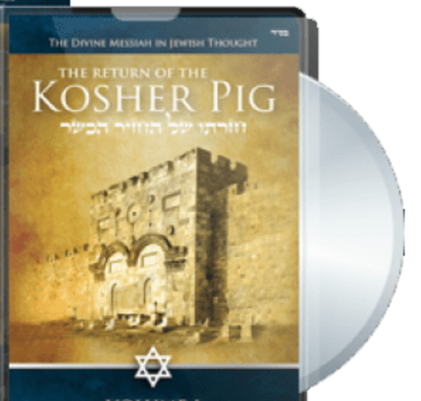Return of the Kosher Pig by Tzahi Shapira DVD 10 hours Yeshiva Teaching