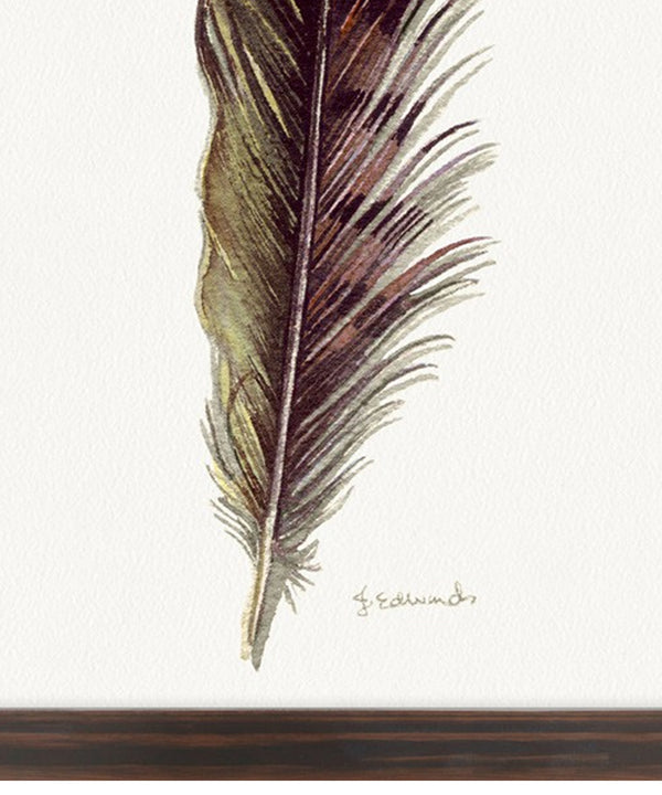 Painted Feather II