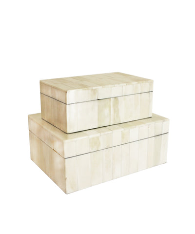 Bone Clad Storage Box