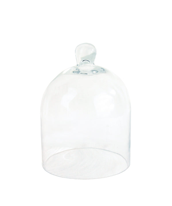 Glass Bell Cloche