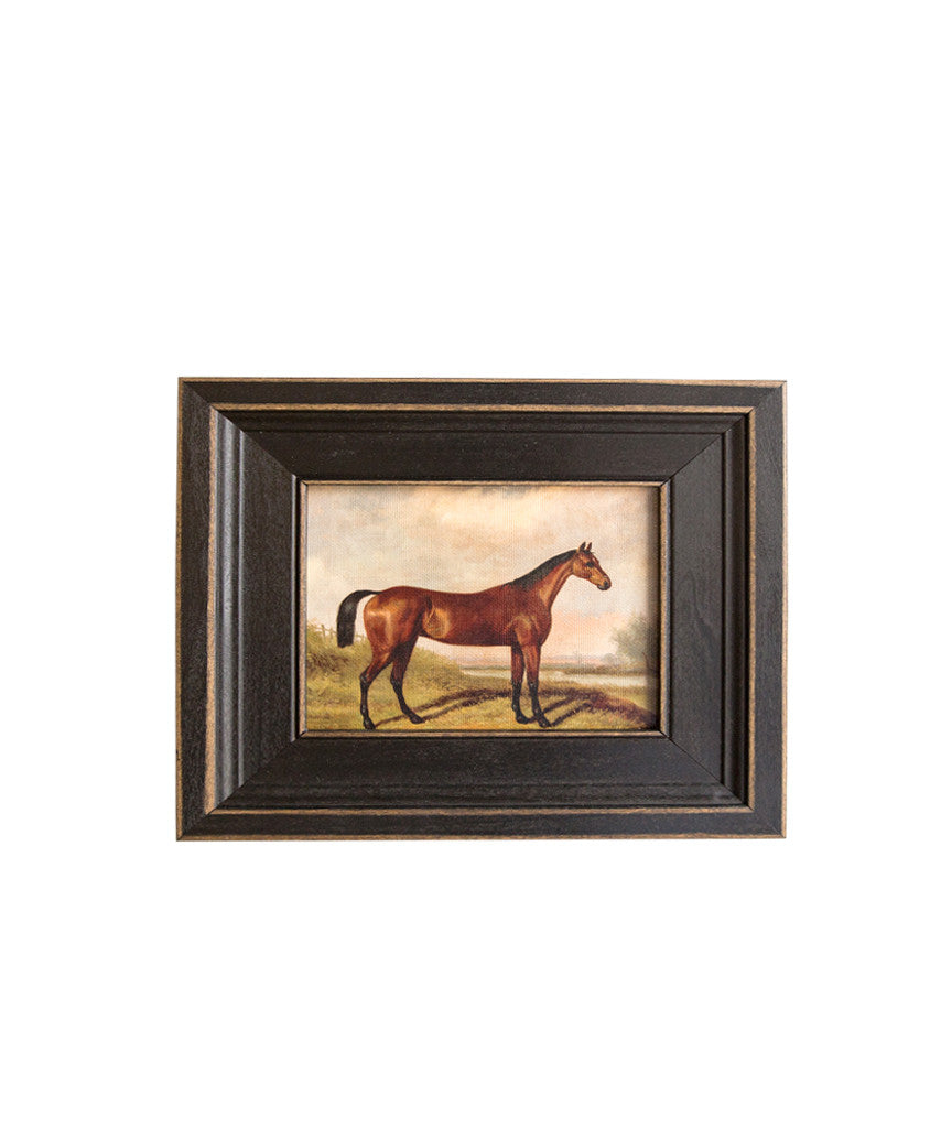 Framed Race Horse