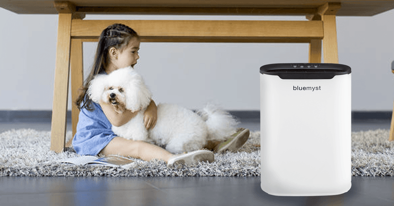 Bluemyst BA110WK 250 sq. ft. 5 Stage HEPA Air Purifier with Programmable Timer Air Purifier Bluemyst