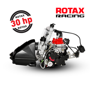 Rotax FR125 Senior Max Engine EVO