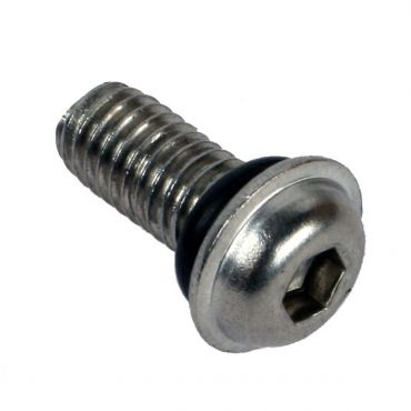 DWT Wheel Beadlock Screw 10mm & Oring