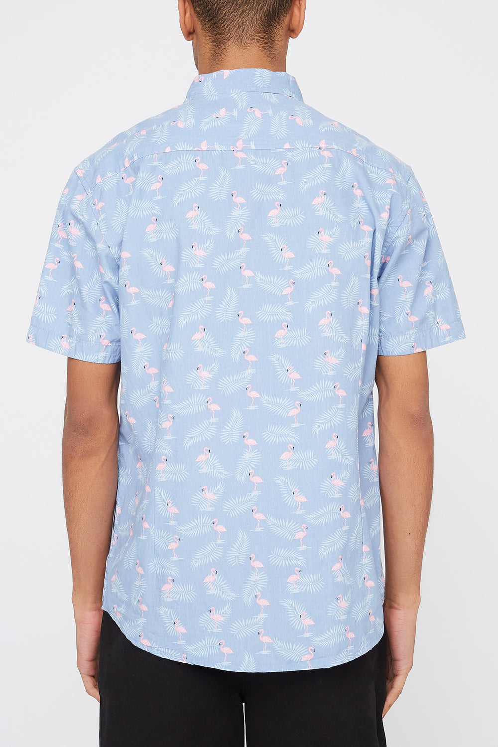 Artistry In Motion Mens Flamingo Print Button-Up Shirt Blue