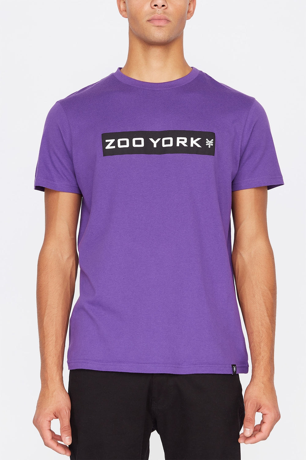 Zoo York Mens Box Logo T-Shirt Purple