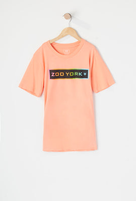 Zoo York Boys Gradient Logo T-Shirt