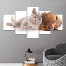 Load image into Gallery viewer, Animal Cat Painting Dog