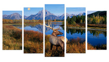 Load image into Gallery viewer, Animal Deer 5 Panels Wood N Canvas Wall Art Paintings