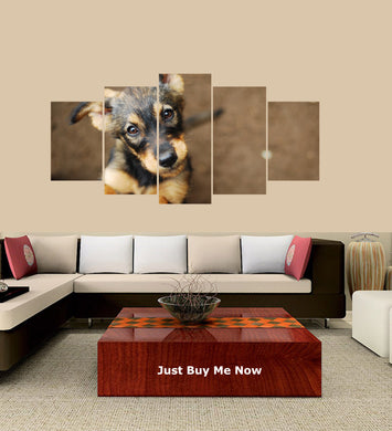 Cute Dog 5 Panels Wood N Canvas Wall Art Paintings