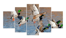 Load image into Gallery viewer, Duck Hunting 5 Panels Wood N Canvas Wall Art Paintings