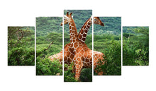 Load image into Gallery viewer, Giraffes 5 Panels Wood N Canvas Wall Art Paintings