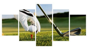 Golf Ball 5 Panels Wood N Canvas Wall Art Paintings