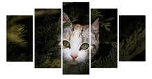 Load image into Gallery viewer, cat 5 Panels Wood N Canvas Wall Art Paintings