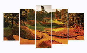 colors Golf Course 5 Panels Wood N Canvas Wall Art Paintings