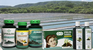 JUNE Spirulina Farm