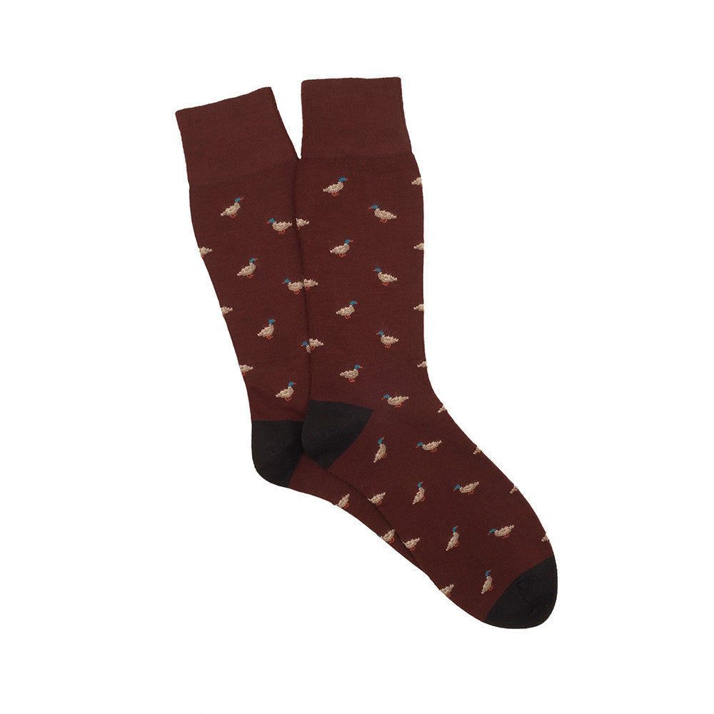 Corgi Duck Merino Wool Socks - Port