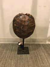 Load image into Gallery viewer, Turtle Shell Table Lamp