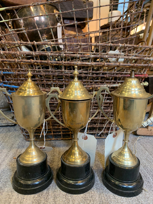 Old Trophies- Small