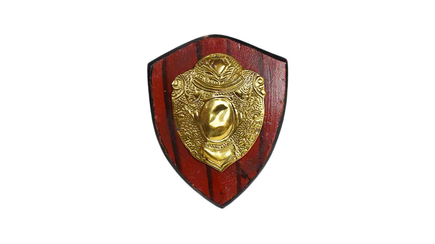 Small Shield Decor