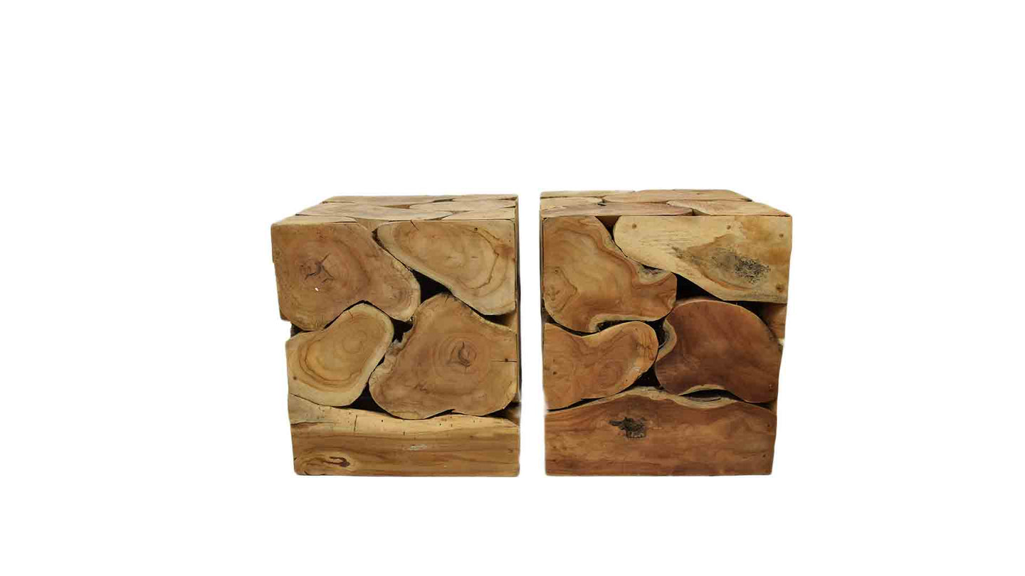 Trunk Wooden Blocks- Pair