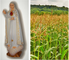 eco-friendly statue and cornfield