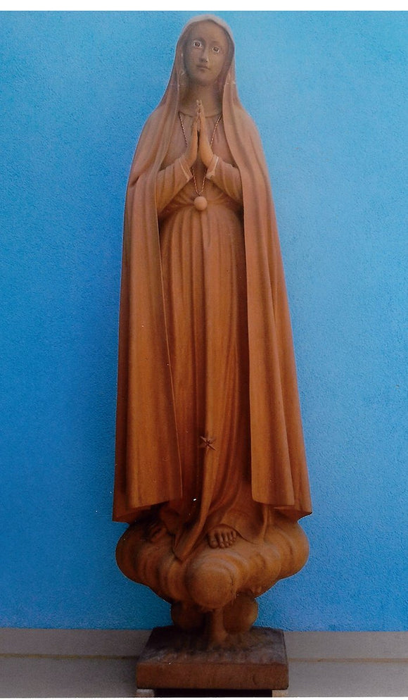Lady of Fatima Pilgrim 05