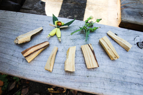 Palo Santo Wood // HOLY SMUDGE STICK