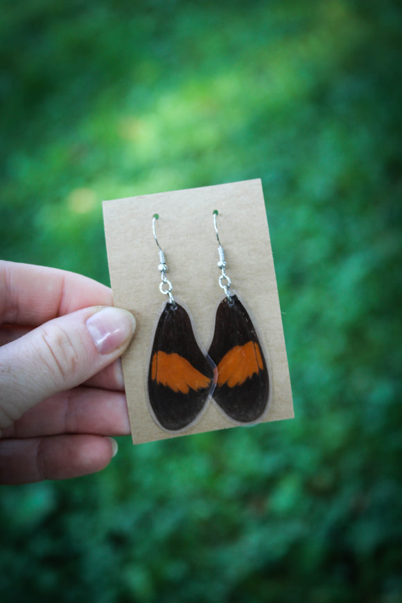 Orange & Black Butterfly Earrings