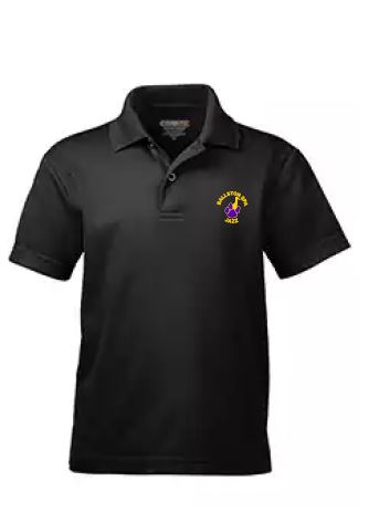 BSpaMD- Jazz Performance Polo