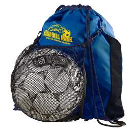APSC- Convertible Ball bag