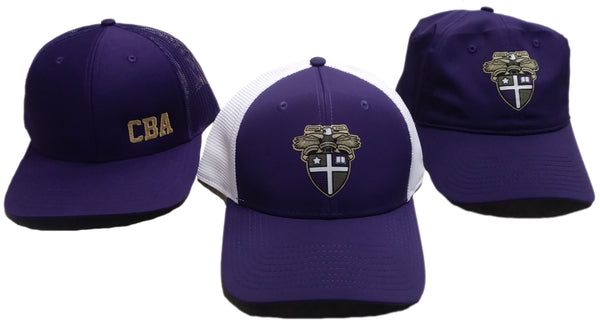CBA- Favorite baseball hats
