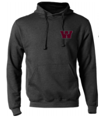 CANVLT19- Wicked Smart Classic Fleece Hoodie