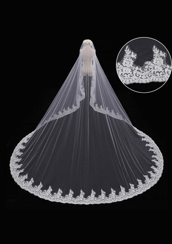 Beautiful Long Cathedral Veil with Lace at the Edge