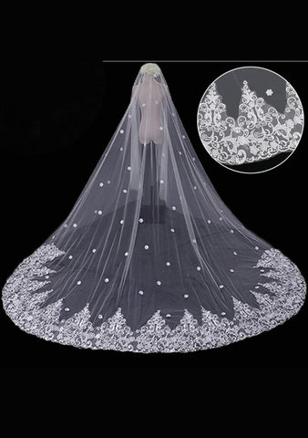 Cathedral Length Veil style 3